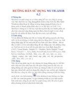 BÁO CÁO THỰC TẬP-HƯỚNG DẪN SỬ DỤNG MUTILIZER 6.2