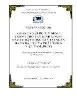 Quản lý rủi ro tín dụng trong cho vay kinh doanh đầu tư bất động sản tại Ngân hàng Đầu tư và Phát triển Việt Nam (BIDV)