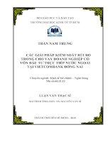 Các giải pháp kiểm soát rủi ro trong cho vay doanh nghiệp có vốn đầu tư trực tiếp nước ngoài tại Vietcombank Đồng Nai