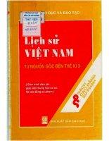 Giáo trình Lịch sử Việt Nam từ nguồn gốc đến thế kỷ thứ X: Phần 1