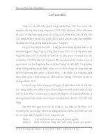luận văn quản trị kinh doanh Phân tích hoạt động sản xuất kinh doanh của Công ty ống thép Việt Nam – Vinapipe
