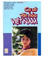 Ebook CƠ SỞ VĂN HÓA VIỆT NAM - TRẦN QUỐC VƯỢNG.PDF