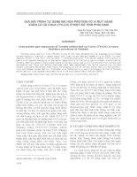 GIẢI MÃ TRÌNH TỰ GENE MÃ HÓA PROTEIN VỎ VI RÚT VÀNG XOĂN LÁ CÀ CHUA (TYLCV) Ở MỘT SỐ TỈNH PHÍA NAM