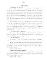 BÀI BÁO CÁO THỰC TẬP-kế toán bán hàng và xác định kết quả kinh doanh tại công ty TNHH Nhât Tinh