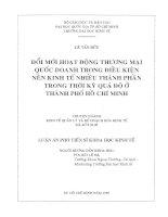Đổi Mới Hoạt Động Thương Mại Quốc Doanh Trong Điều Kiện Nền Kinh Tế Nhiều thành phần trong thời kỳ quá độ ở TP. Hồ Chí Minh