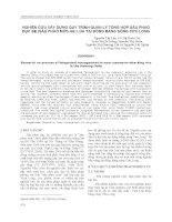NGHIÊN CỨU XÂY DỰNG QUY TRÌNH QUẢN LÝ TỔNG HỢP SÂU PHAO ĐỤC BẸ (SÂU PHAO MỚI) HẠI LÚA TẠI ĐỒNG BẰNG SÔNG CỬU LONG