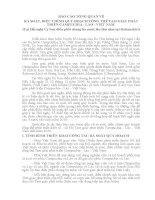 Báo cáo tổng quan về rà soát, điều chỉnh quy hoạch tổng thể tam giác phát triển campuchia – lào   việt nam (tại hội nghị ban điều phối chung ba nước lần thứ năm tại rattanakiri)