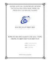 Tiểu luận môn triết KINH TẾ TRI THỨC & KẾT CẤU GIAI - TẦNG TRONG XÃ HỘI VIỆT NAM HIỆN NAY