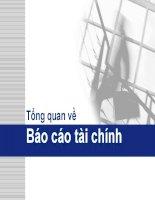 Tổng quan về báo cáo tài chính (Môn Kiểm toán 1)