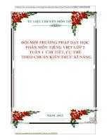 ĐỔI MỚI PHƯƠNG PHÁP DẠY HỌC  PHÂN MÔN TIẾNG VIỆT LỚP 2 TUẦN 1 CHI TIẾT, CỤ THỂ THEO CHUẨN KIẾN THỨC KĨ NĂNG.
