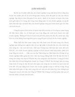 Báo cáo tổng hợp về TÌNH HÌNH TỔ CHỨC THỰC HIỆN CÔNG TÁC TÀI CHÍNH KẾ TOÁN CỦA CÔNG TY TNHH TÂN HOÀNG LINH