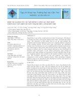 Hiệu quả kinh tế các mô hình canh tác phù hợp trên đất ven biển huyện Thạnh Phú, tỉnh Bến Tre