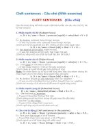 Cleft sentences -Câu chẻ (With exercise)