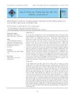 Hiện trạng canh tác và một số đặc tính đất vườn trồng măng cụt tại huyện Chợ Lách, tỉnh Bến Tre