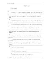 luận văn quản trị kinh doanh NÂNG CAO HIỆU QUẢ HOẠT ĐỘNG TỔ CHỨC SẢN XUẤT CÔNG NGHIỆP Ở THÀNH PHỐ HẢI DƯƠNG