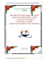 ĐỔI MỚI PHƯƠNG PHÁP DẠY HỌC GIÁO ÁN BUỔI CHIỀU LỚP 5 TUẦN 33 VÀ TUẦN 34 CHI TIÊT, CỤ THỂ THEO CHUẨN KIẾN THỨC KĨ NĂNG