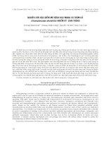 báo cáo khoa học đề tài NGHIÊN CỨU ĐẶC ĐIỂM MÔ BỆNH HỌC MANG CÁ TRẮM CỎ (Ctenopharyngo donidella) NHIỄM KÝ SINH TRÙNG