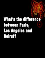 THE DIFFERENCES BETWEEN CITIES