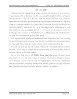 Tiểu luận môn phương pháp nghiên cứu khoa học PHÂN TÍCH CÁC NGUYÊN LÝ SÁNG TẠO TRONG SỰ PHÁT TRIỂN CỦA HỆ ĐIỀU HÀNH ANDROID