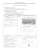 Giáo án Thể dục lớp 1 cả năm_CKTKN_Bộ 6