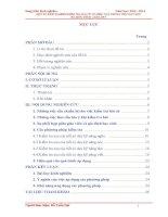 MỘT SỐ KINH NGHIỆM KIỂM TRA BÀI CŨ CÓ HIỆU QUẢ TRONG VIỆC DẠY HỌCBỘ MÔN TIẾNG ANH LỚP 5