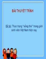BÁO CÁO THỰC TẬP-Đề tài Thực trạng  sống thử  trong giới sinh viên Việt Nam hiện nay