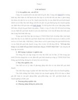 BÁO CÁO THỰC TẬP-Kế toán bán hàng và xác định kết quả kinh doanh tại công ty TNHH Nhật Tinh
