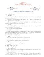 Đề thi HK II và đáp án môn Vật lý 11CB - Đề số 1