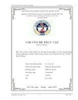 luận văn tài chính ngân hàng Phát triển dịch vụ Thanh Toán Quốc Tế tại Ngân hàng Nông Nghiệp & Phát triển Nông Thôn chi nhánh Hà Nội - PGD Bạch Đằng.
