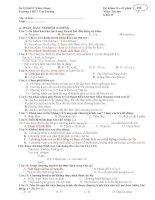 Đề kiểm tra 1 tiết tin học 11 mới