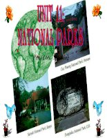 Slide english 10 unit 11 national parks _ THPT Muong Luan