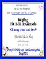 Slide sinh 9 bài 10 giảm phân _Gv T.T Hồng