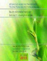 Slide sinh 11 bài 35 hoocmôn thực vật _N.T Chằm