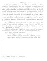luận văn kế toán  Thực trạng tổ chức kiểm toán tại công ty TNHH Ernst & Young