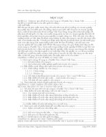 luận văn kế toán  Tổ chức hạch toán tại Công ty Cổ phần Thú y Xanh