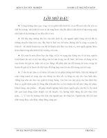 Báo cáo thực tập kế toán tại công ty cổ phần luyện kim (Sadakim)