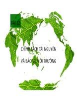 Bài 12: Chính sách bảo vệ môi trường