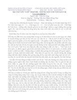 Bài thi viết về hội chữ thập đỏ