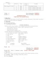 Giáo án Tiếng Anh lớp 5 (Mới)