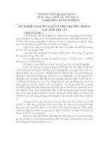 SÁNG KIẾN KINH NGHIỆM       TÍCH HỢP GIÁO DỤC BẢO VỆ MÔI TRƯỜNG TRONG DẠY HỌC ĐỊA LÍ 9
