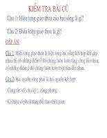 Bài giảng Vật Lý  12. Bài 9. Sóng dừng
