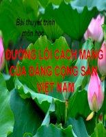 Tiểu luận Sự ra đời của Đảng cộng sản Việt Nam