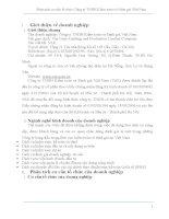 Phân tích cơ cấu tổ chức Công ty TNHH Kiểm toán và Định giá Việt Nam