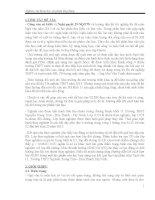 SKKN Hướng dẫn HS cách làm bài NLXH trong một tác phẩm văn học (NGỮ VĂN 11)