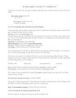 Noun and Verb agreement