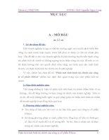 BÀI BÁO CÁO THỰC TẬP- PHÂN TÍCH TÌNH HÌNH TÀI CHÍNH TẠI CÔNG TY CỔ PHẦN BIBICA- GIẢI PHÁP