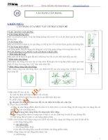 Các dạng cân bằng - Cân bằng của vật có mặt chân đế_Chuyên đề bồi dưỡng Vật lý 10