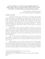 báo cáo khoa học nông nghiệp Ảnh hưởng của một số nền phân bón và chất điều hòa sinh trưởng đến năng su61t và chất lượng hoa lan Dendrobium Sonia