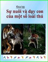 tiét 60: Sự nuôi dạy con của một số loài thú