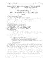 BÁO CÁO THU HOẠCH KIẾN TẬP SƯ PHẠM CỦA CÁ NHÂN SINH VIÊN Ngành : Sư phạm Ngữ Văn Kiến tập tại trường: THPT Tân Hiệp